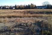 empty lot
