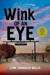 Wink of an Eye book cover